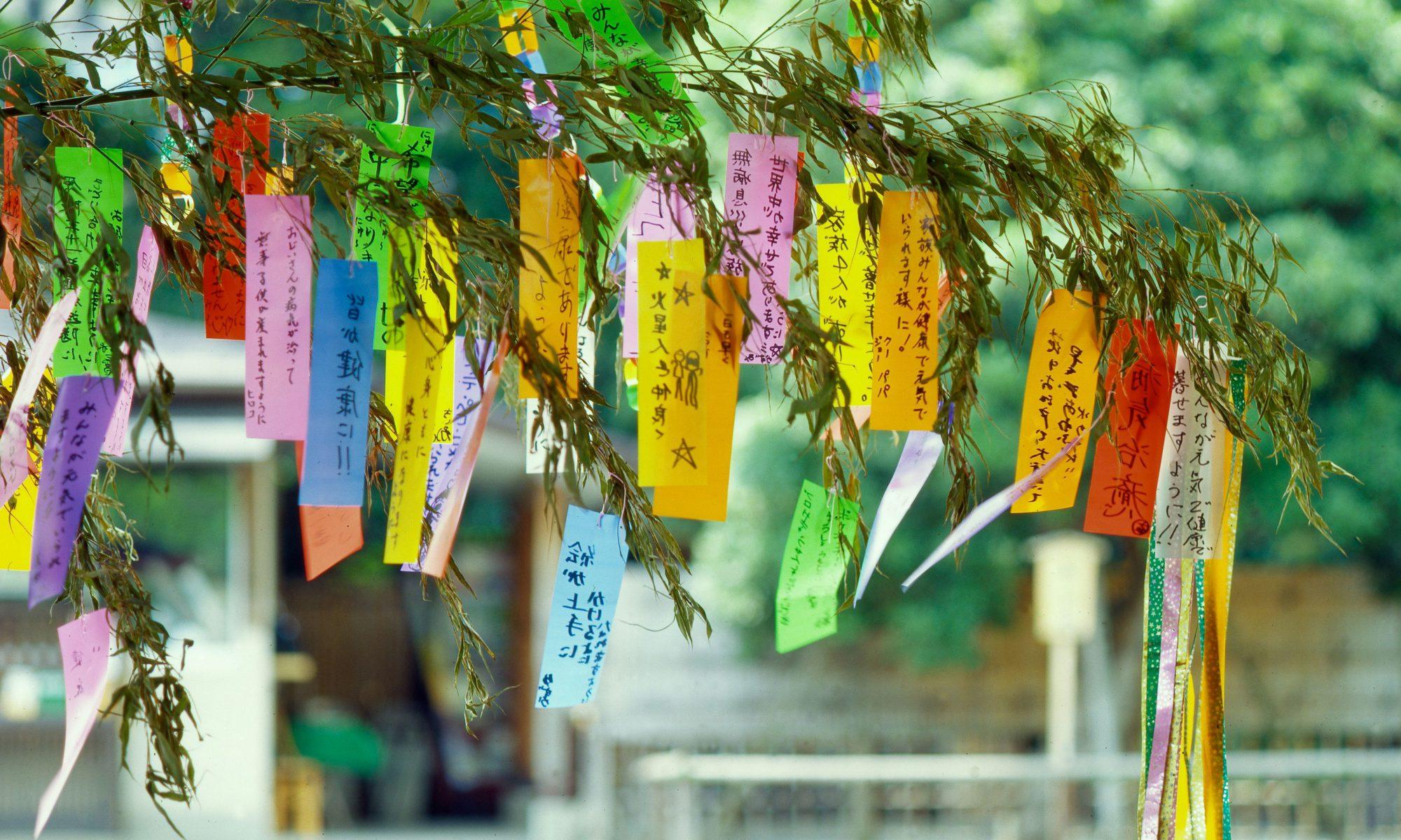 7 tanabata
